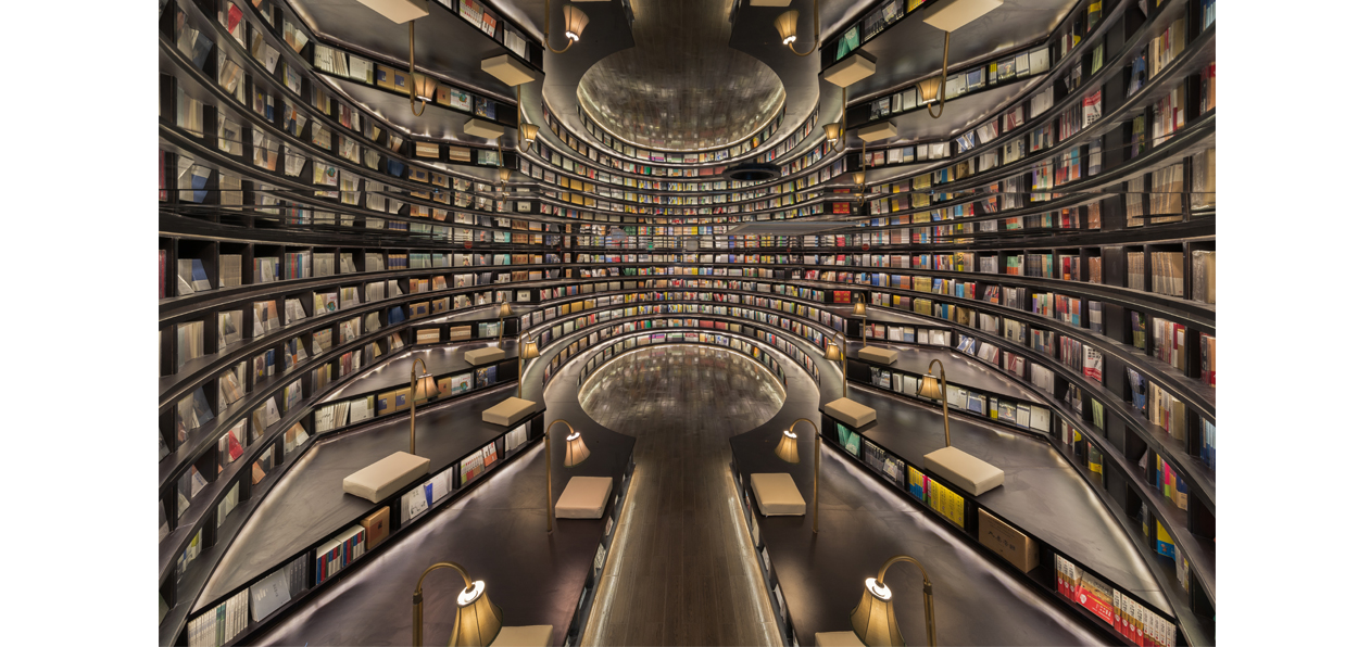 An Infinite Library Architectural Design